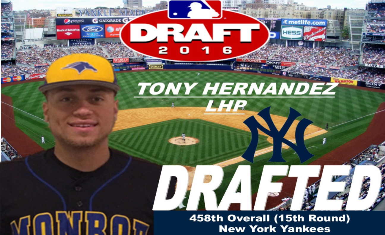 Monroe College Pitcher Tony Hernandez Selected by Yankees in